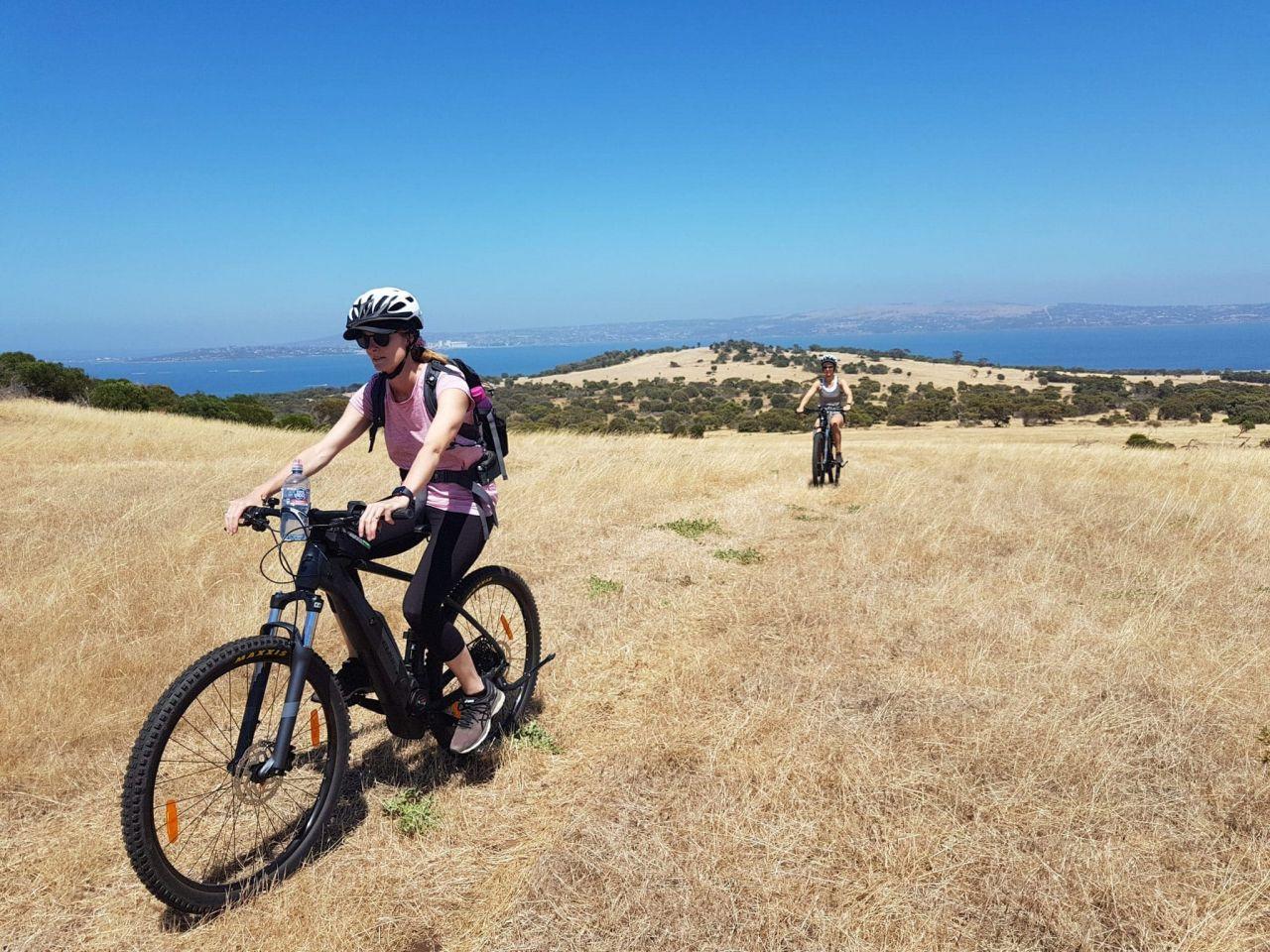 Electric Mountain Bikes 03
