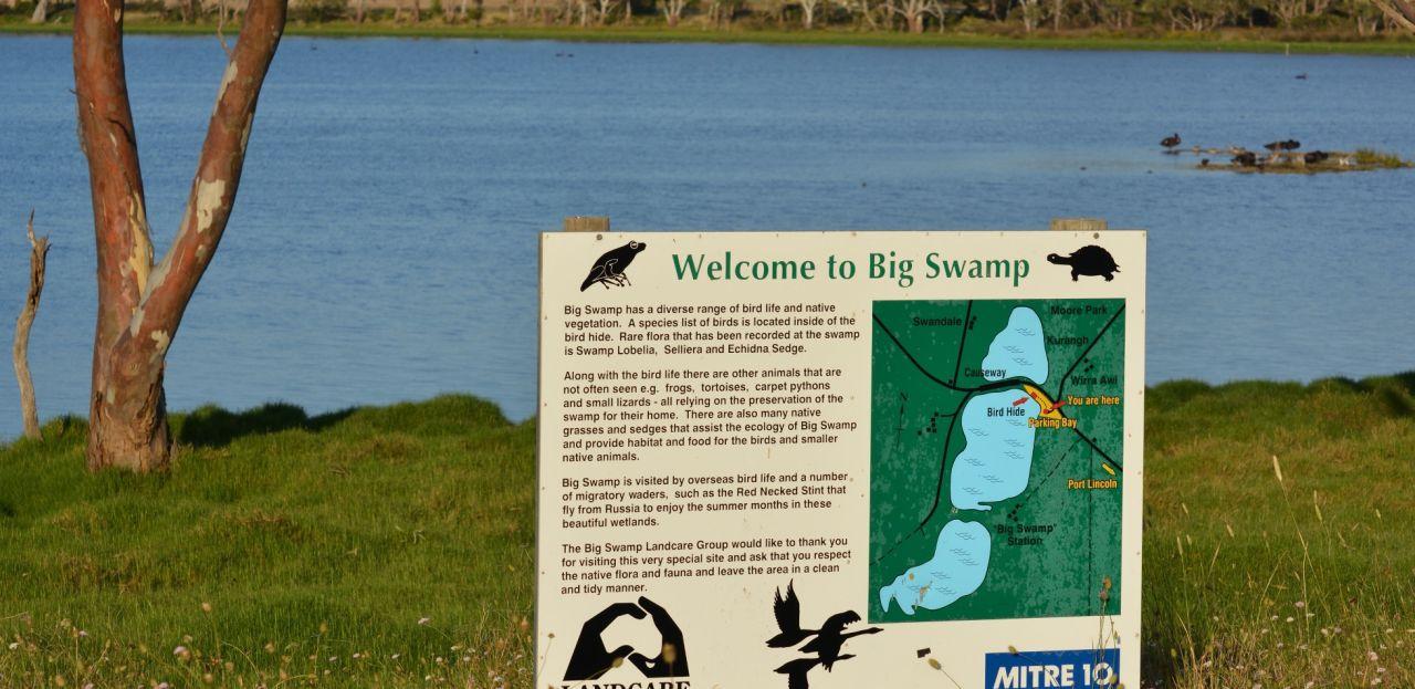 Big Swamp