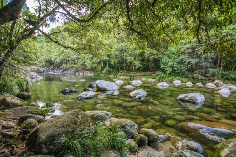 FNQ Nature Tours - Landscape 05